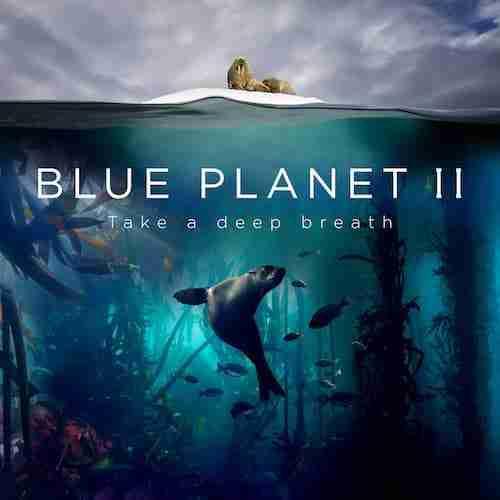 Listen to Radiohead & Hans Zimmer's New Song (ocean) bloom