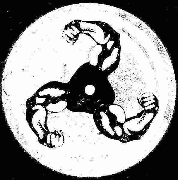 Feel My Bicep - Spotify Playlist