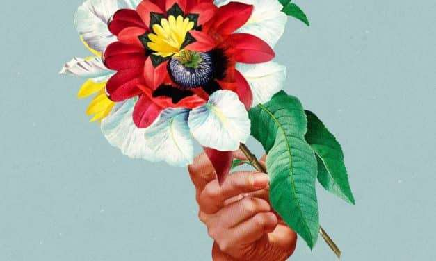 Maribou State 'Kingdoms In Colour' album just announced